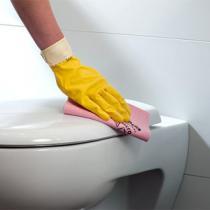 Очистка санитарных зон